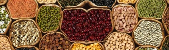 BeansPulses