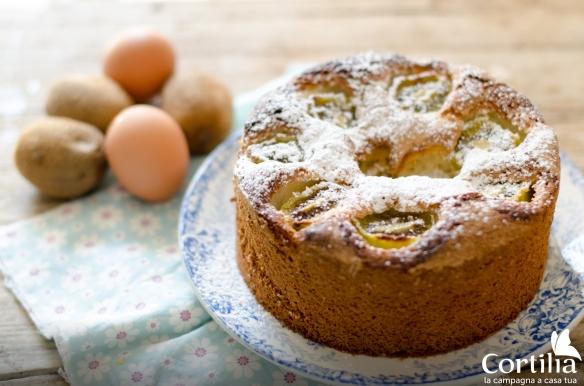 torta di kiwi 2