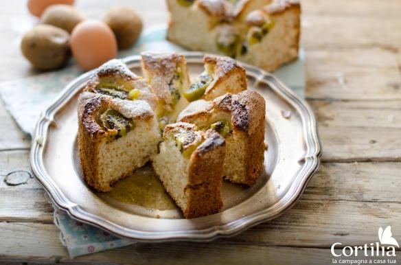 torta di kiwi 3