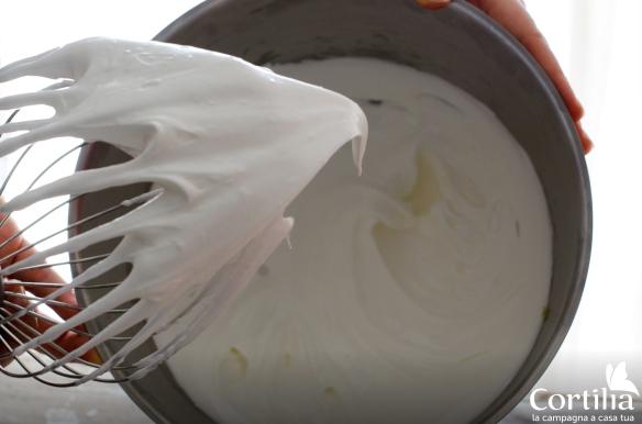 torta di kiwi 4