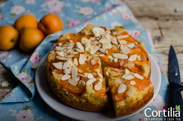 torta di albicoccheR