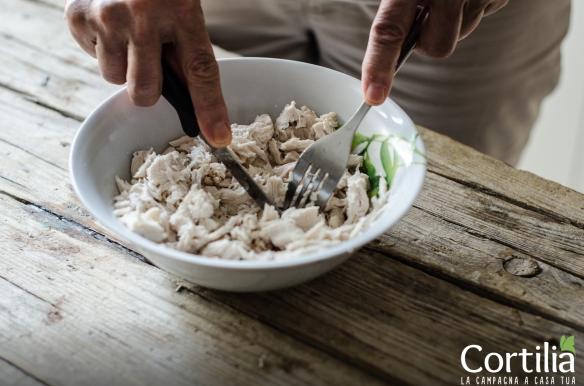 insalata di pollo e melone2R